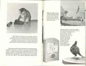 ABE Brochure