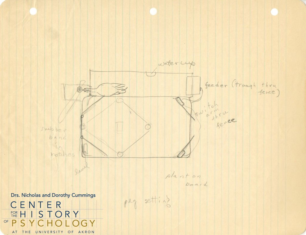 Top-down diagram on lined notebook paper of a miniature baseball field arrangement designed to be operable by a chicken. The device includes a bat for the chicken to peck at and a feeder to supply food to the chicken.